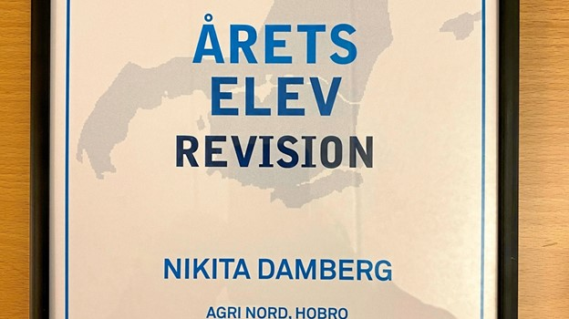 Diplom som bevis for Nikitas status som årets elev inden for revision anno 2019.