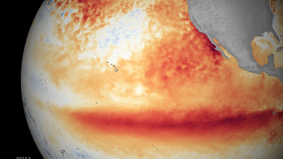 El Nino worst in over 15 years, severe impact likely: UN Foto: Scanpix/-