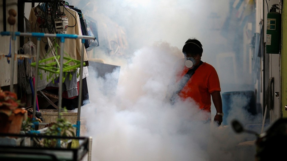 A city worker fumigates the area to control the spread of mosquitoes at a university in Bangkok Foto: Reuters/Athit Perawongmetha